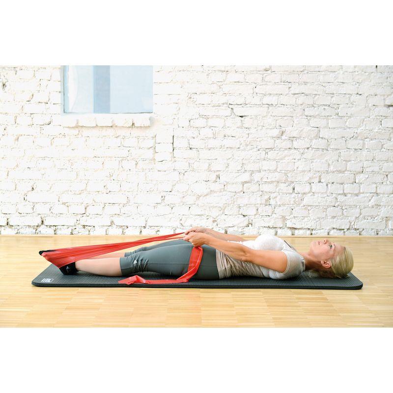 Bandes de Gymnastique pour Tous Les Groupes Musculaires avec Guide dentra/înement en kit ou Individuellement Fitcarrots Bandes de r/ésistance Bandes de r/ésistance